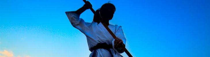 Martial Arts Equipment Swords Of The East